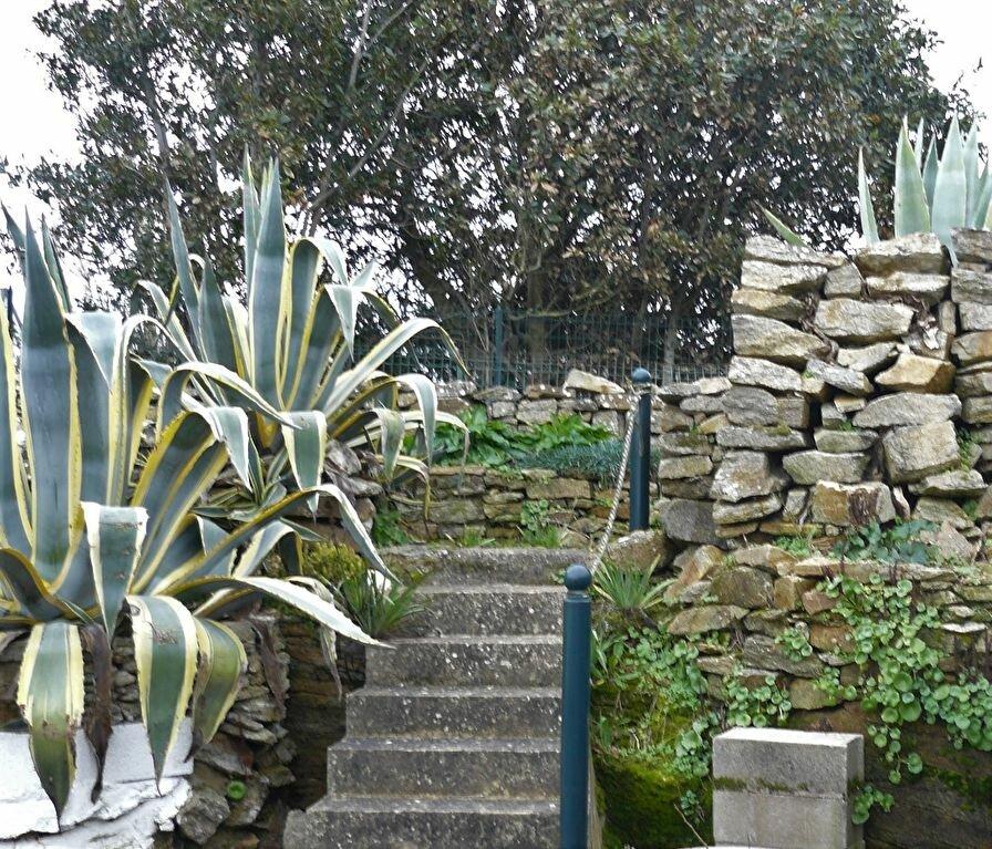 Maison à louer 6 127.66m2 à Quiberon vignette-1