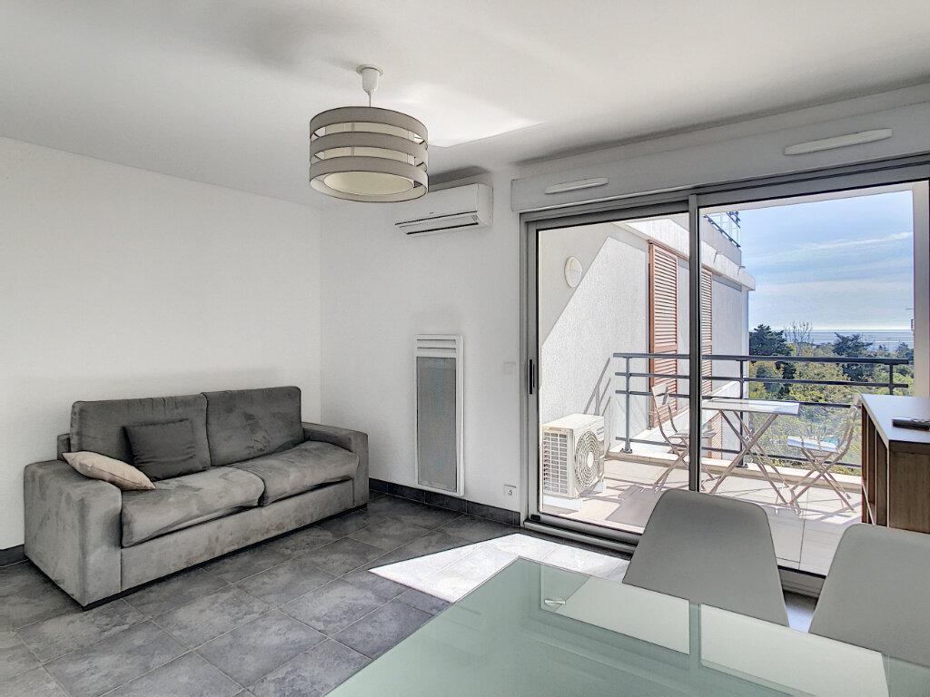 Appartement à louer 1 31m2 à Antibes vignette-2