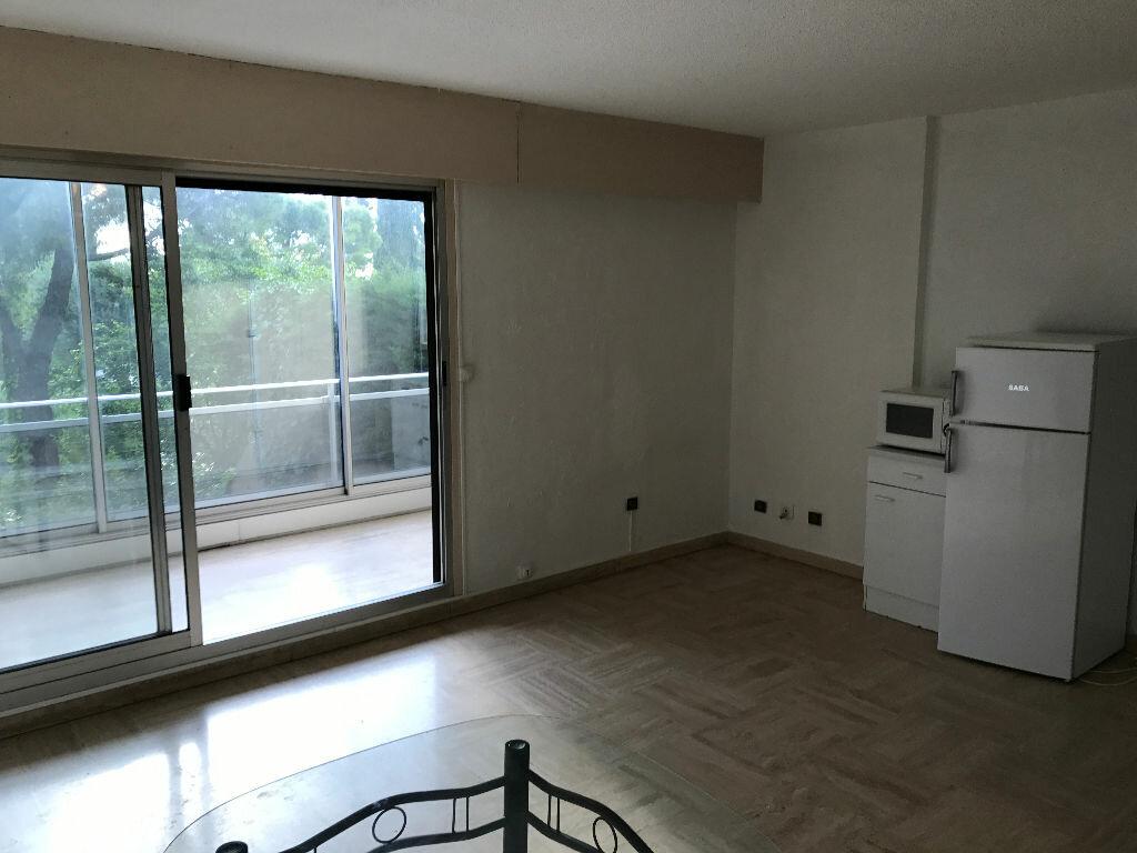 Appartement à louer 1 27.09m2 à Villeneuve-Loubet vignette-1