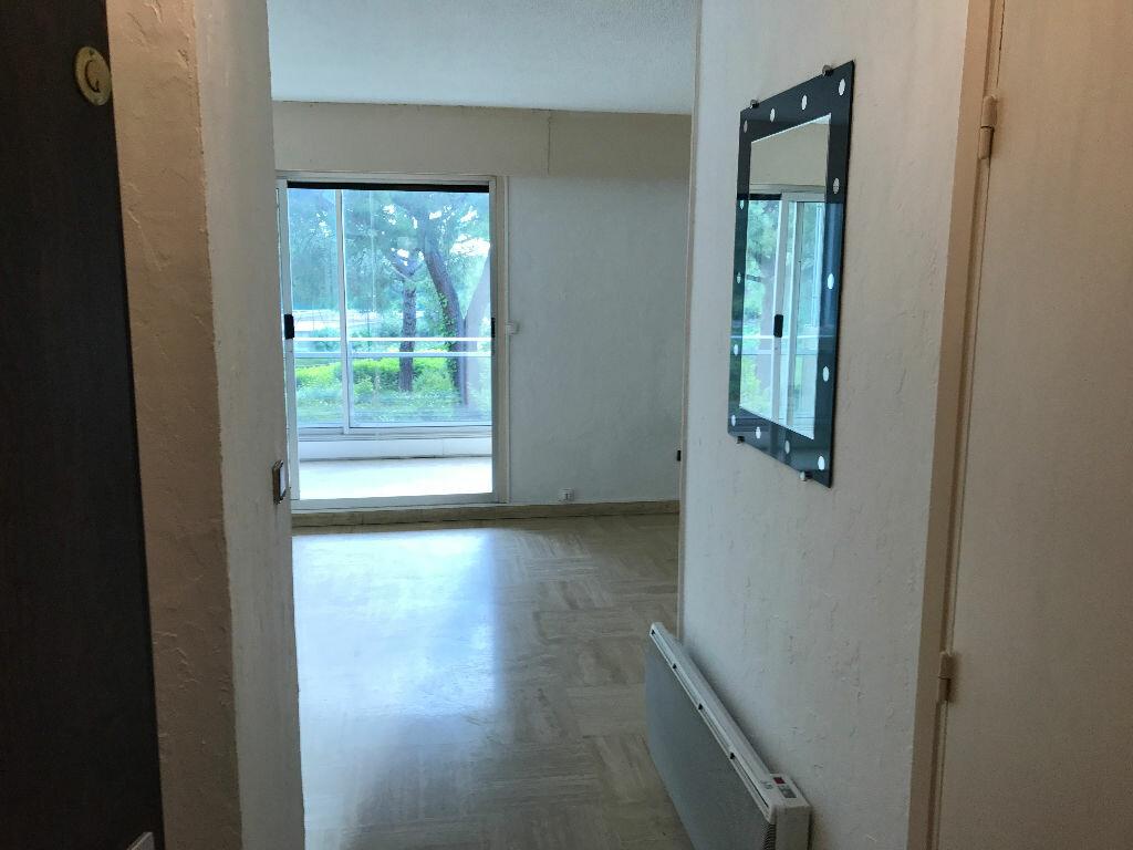 Appartement à louer 1 27.09m2 à Villeneuve-Loubet vignette-16
