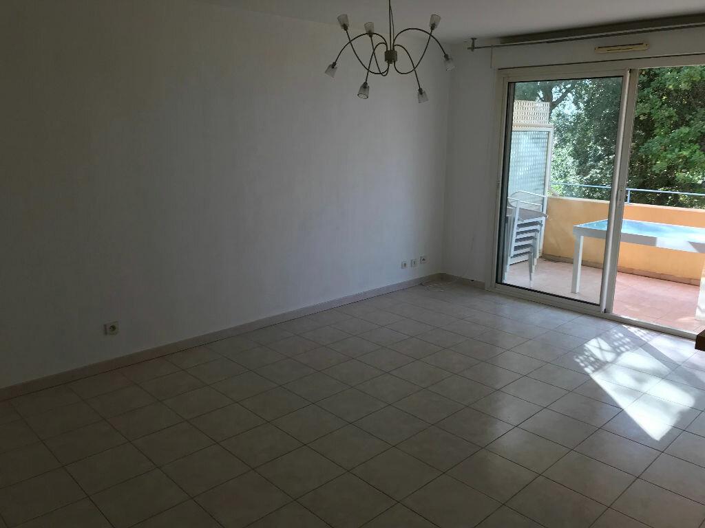 Appartement à louer 3 66.03m2 à Biot vignette-8