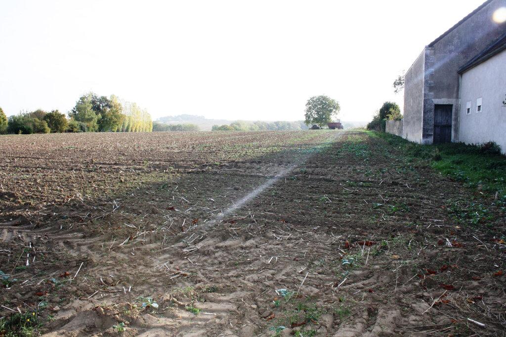 Terrain à vendre 0 700m2 à Chevannes vignette-1