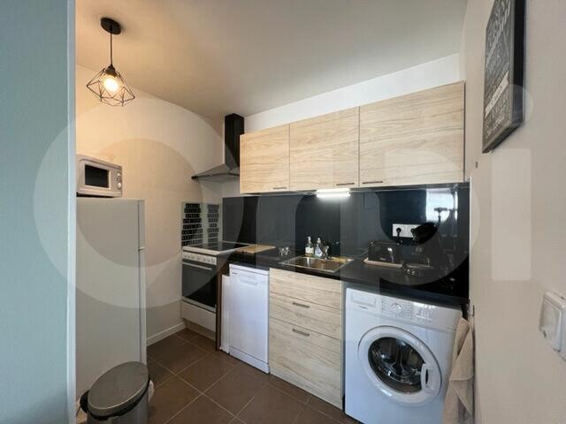 Appartement à louer 1 30.26m2 à Marseille 8 vignette-4