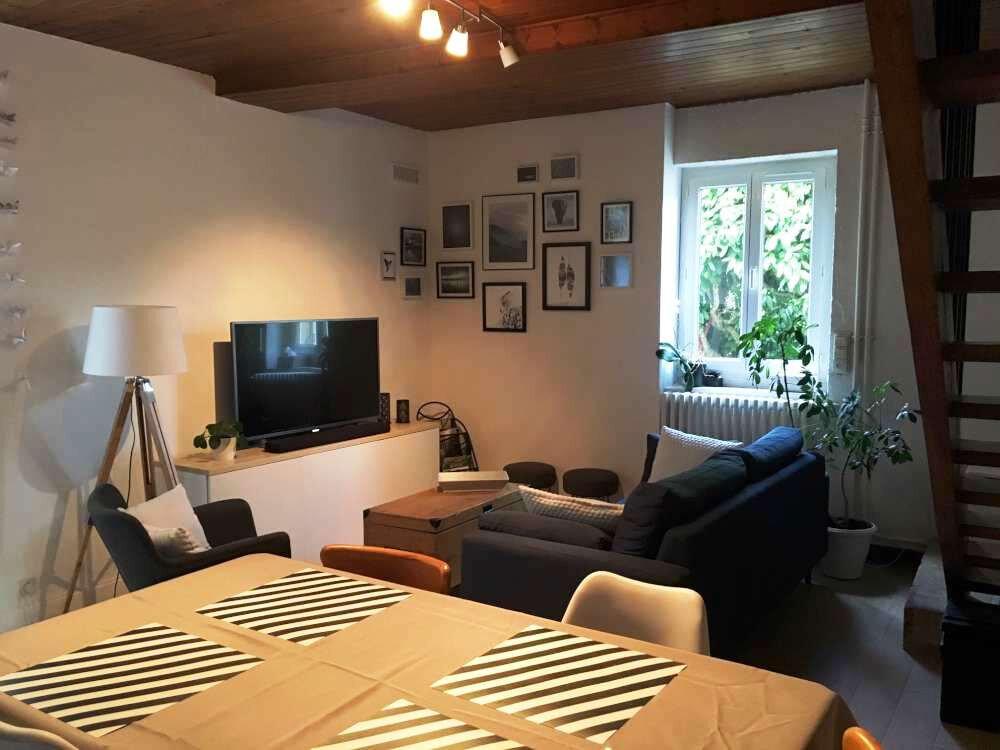 Maison à louer 3 78.8m2 à Saint-Jean-le-Blanc vignette-3