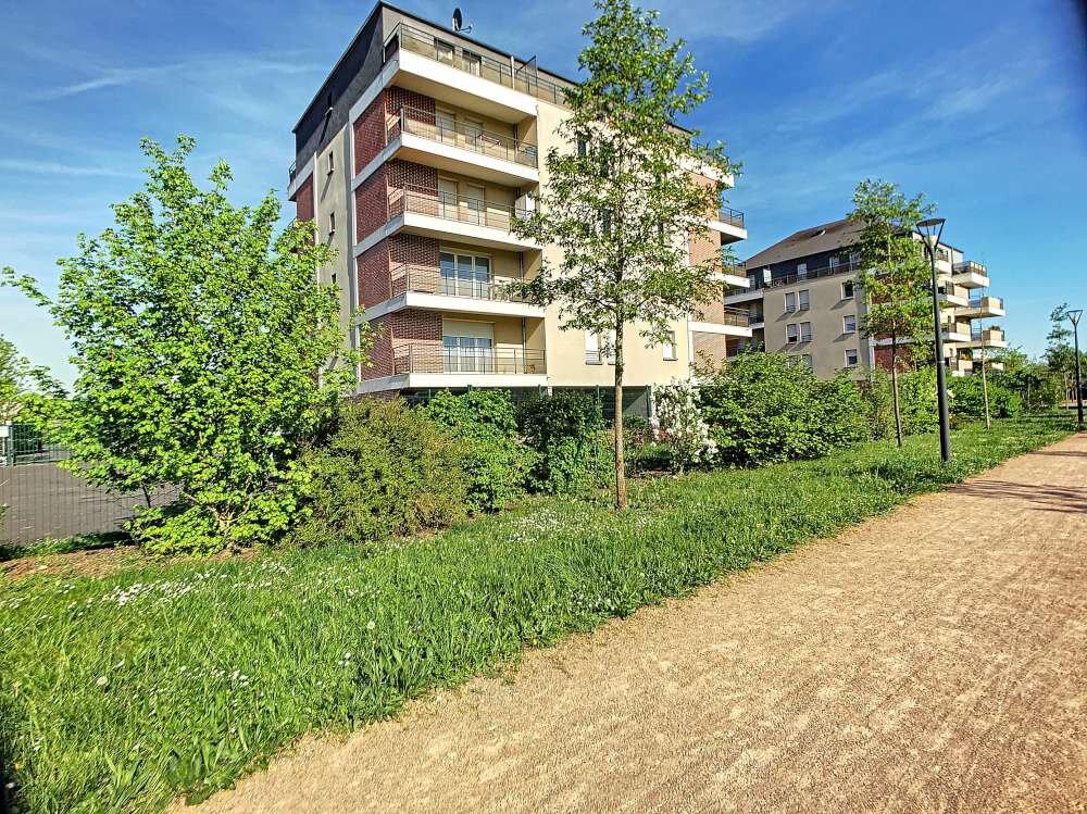Appartement à louer 2 41.88m2 à Orléans vignette-1