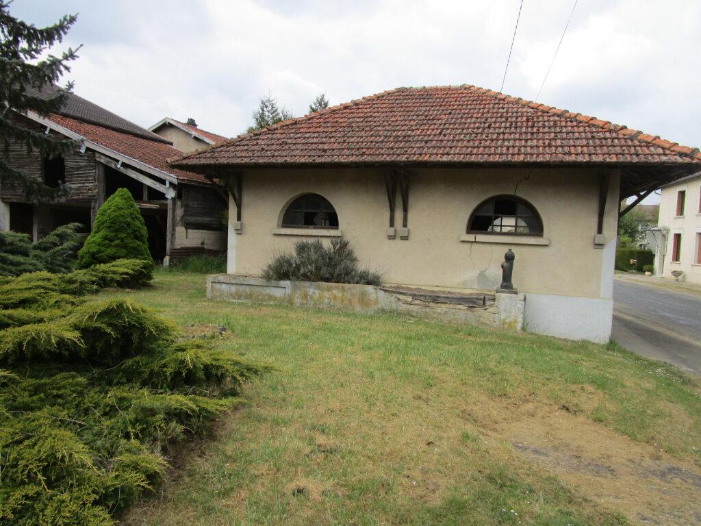 Maison à vendre 5 162m2 à Dannevoux vignette-2
