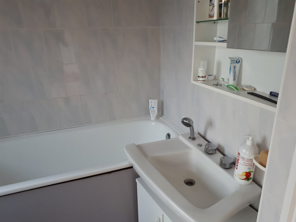 Appartement à louer 1 22m2 à Nancy vignette-6