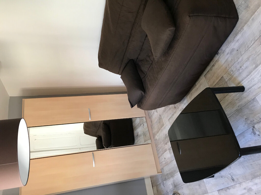 Appartement à louer 1 29m2 à Nancy vignette-6