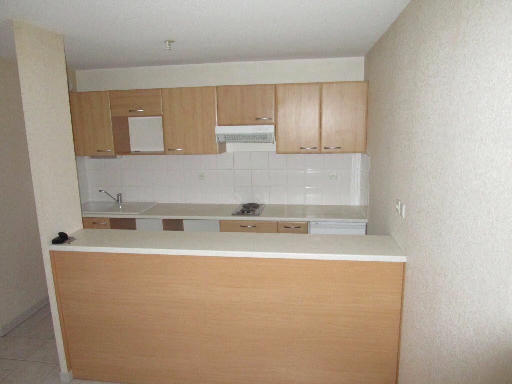 Appartement à louer 2 42.53m2 à Nègrepelisse vignette-2