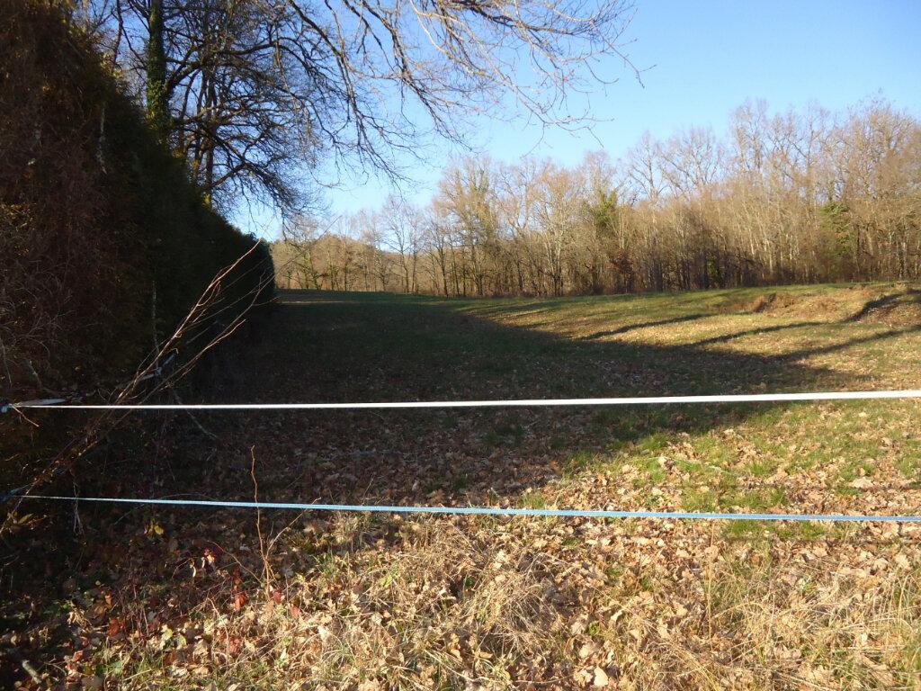 Terrain à vendre 0 2900m2 à Terrasson-Lavilledieu vignette-2