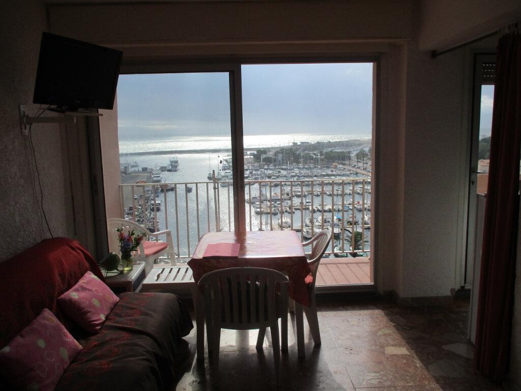 Appartement à vendre 1 27.49m2 à Saint-Cyprien vignette-3