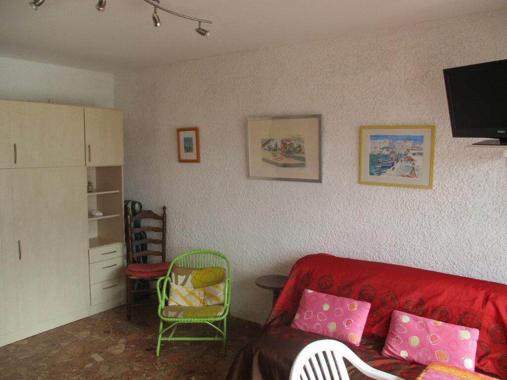 Appartement à vendre 1 27.49m2 à Saint-Cyprien vignette-5