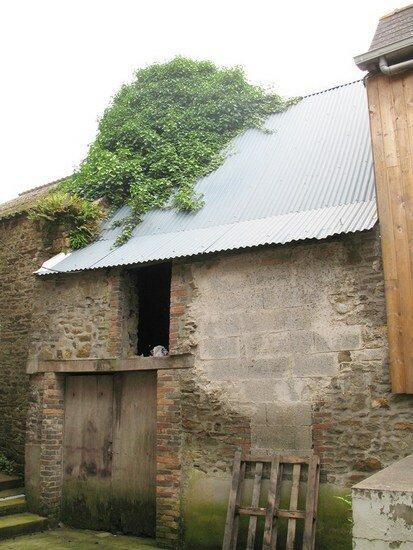 Immeuble à vendre 0 175m2 à Martigné-Ferchaud vignette-4