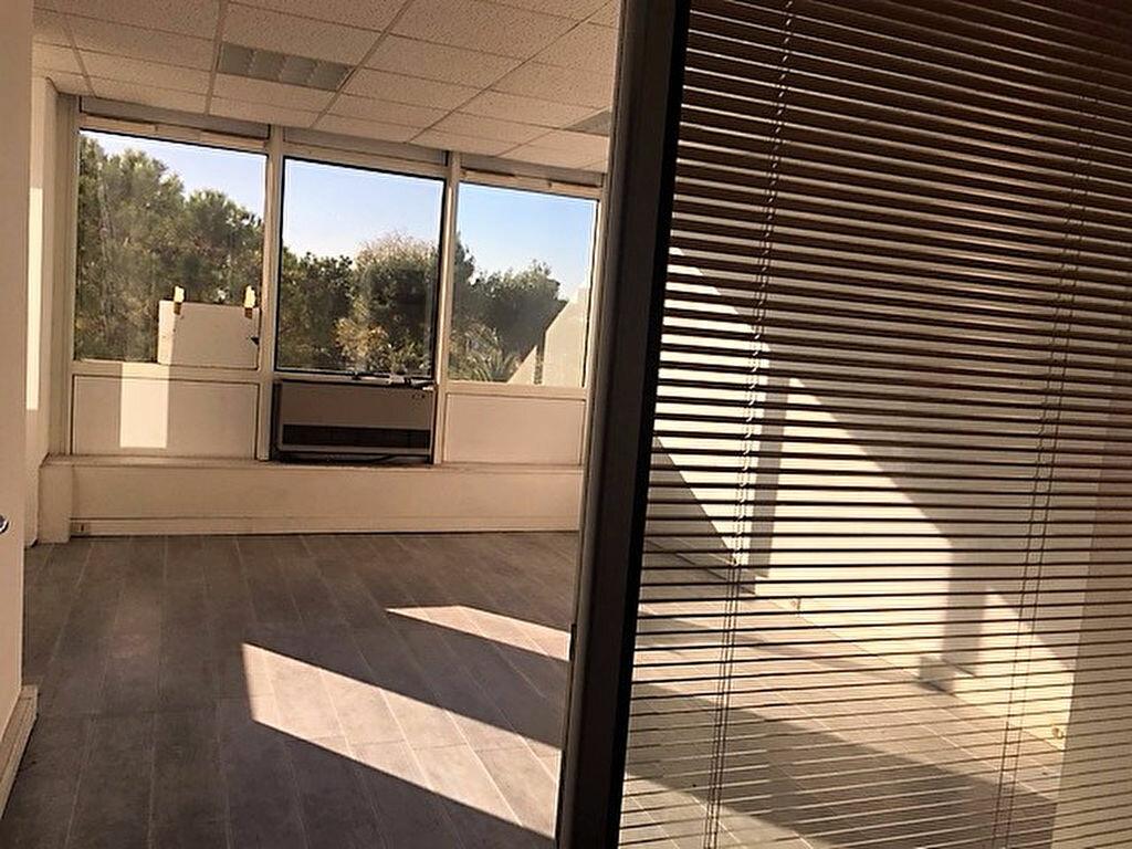 Appartement à vendre 1 24.84m2 à Cagnes-sur-Mer vignette-3