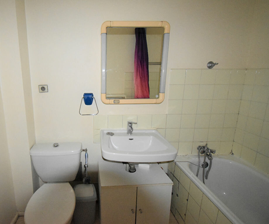 Appartement à louer 1 31m2 à Lyon 8 vignette-4