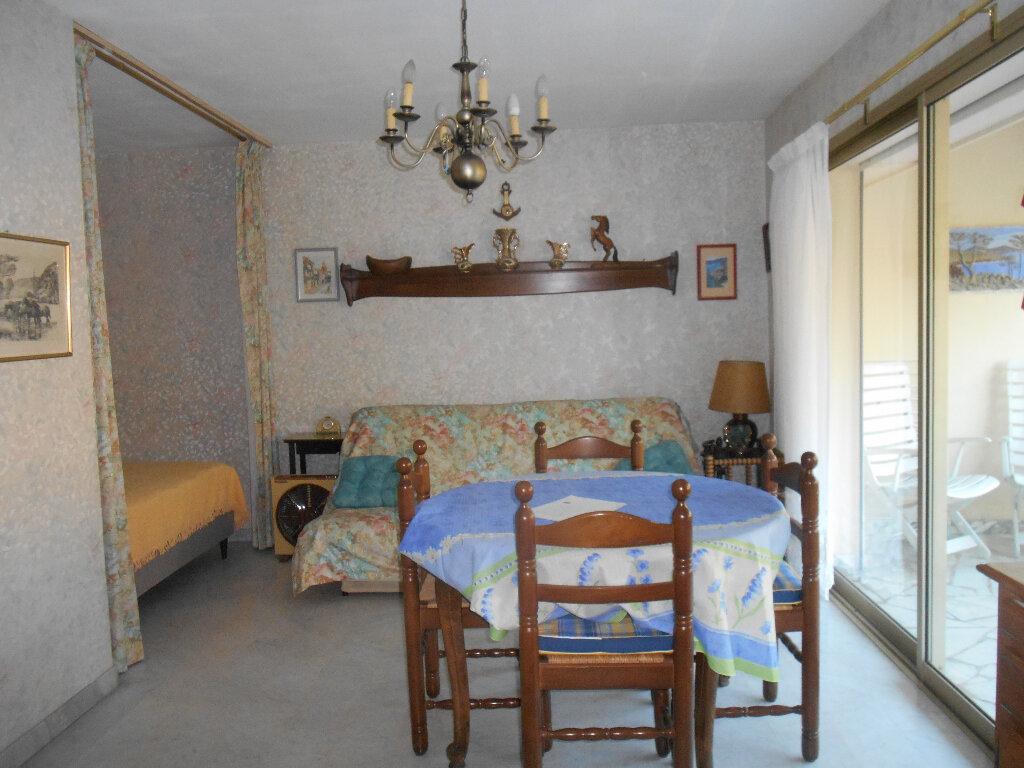 Appartement à louer 1 31.03m2 à Mandelieu-la-Napoule vignette-5