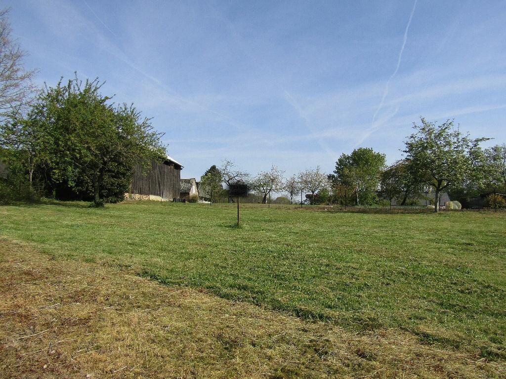 Terrain à vendre 0 843m2 à La Neuville-en-Beine vignette-2