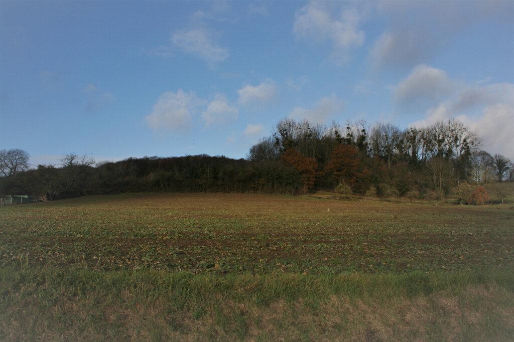 Terrain à vendre 0 1029m2 à Béthancourt-en-Vaux vignette-1