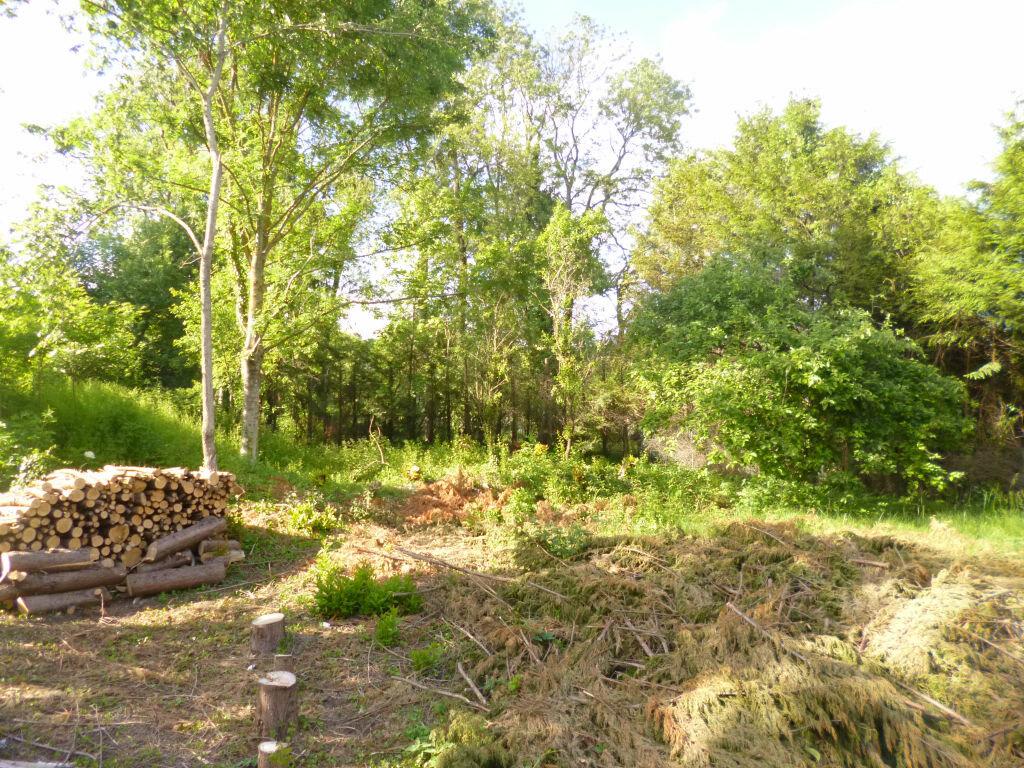 Terrain à vendre 0 1251m2 à Neuville-sur-Ailette vignette-1