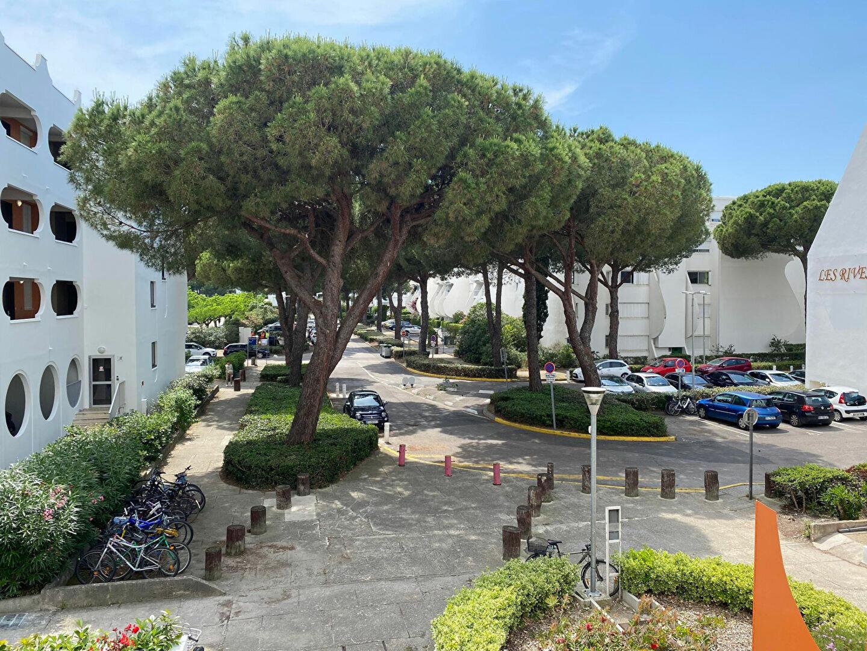 Appartement à louer 1 26m2 à La Grande-Motte vignette-4