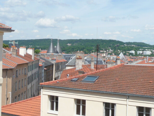 Appartement à louer 1 19.44m2 à Nancy vignette-5