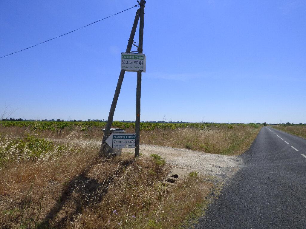 Terrain à vendre 0 15585m2 à Saint-Hippolyte vignette-1