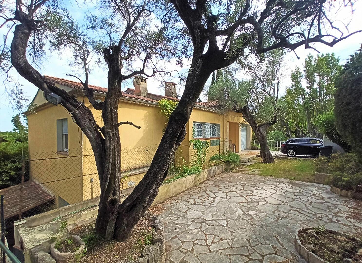 Maison à vendre 5 175m2 à Cagnes-sur-Mer vignette-1