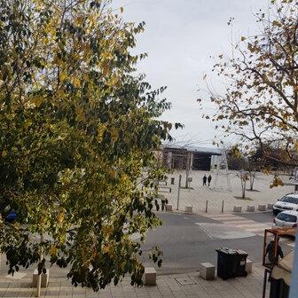 Appartement à louer 4 114m2 à Bastia vignette-1