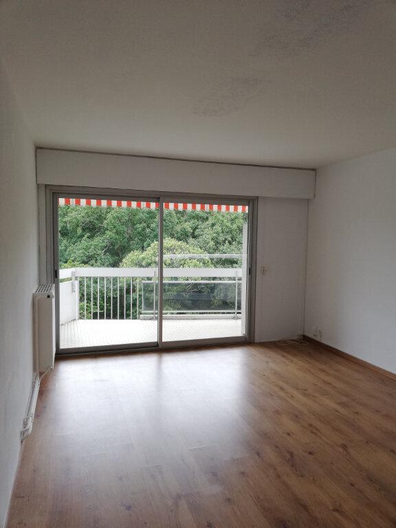Appartement à louer 1 33m2 à Anglet vignette-2