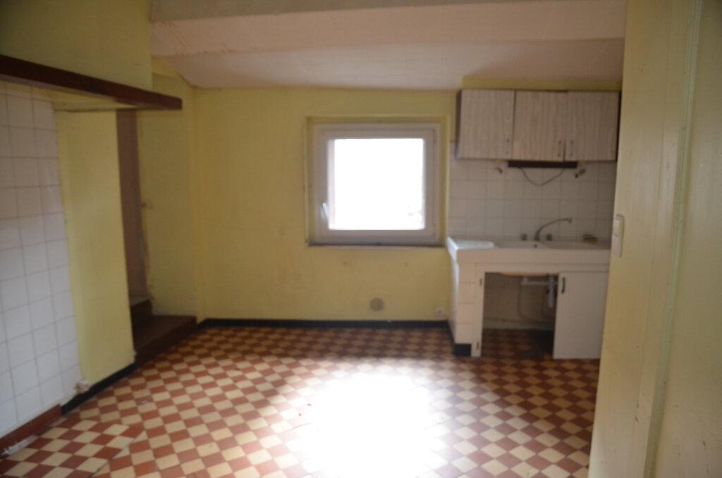 Maison à vendre 3 70m2 à Limoux vignette-6