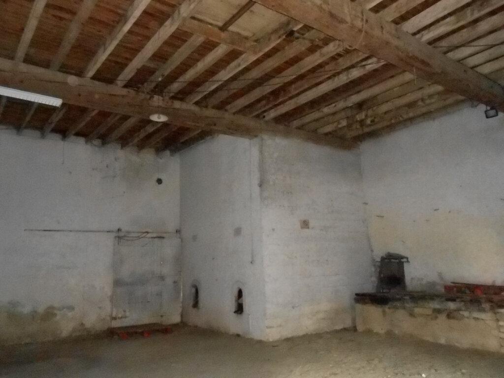 Maison à vendre 2 250m2 à Saint-Hilaire vignette-4
