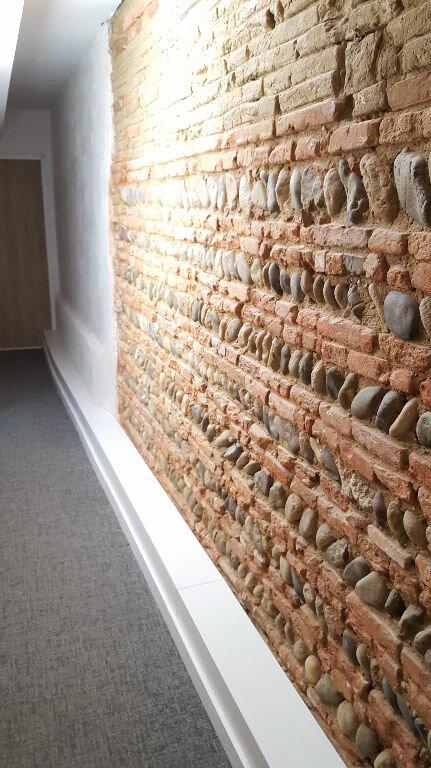 Appartement à louer 1 20.5m2 à Toulouse vignette-4