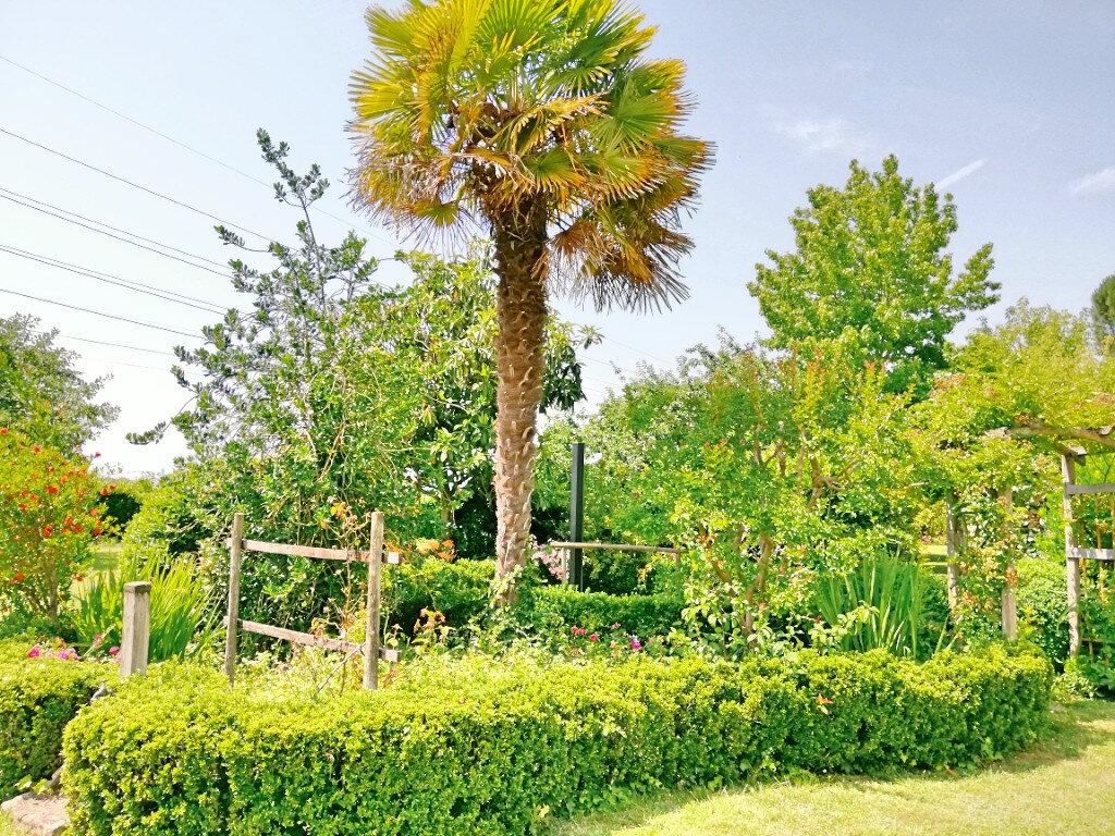 Maison à vendre 8 265m2 à Bergerac vignette-15