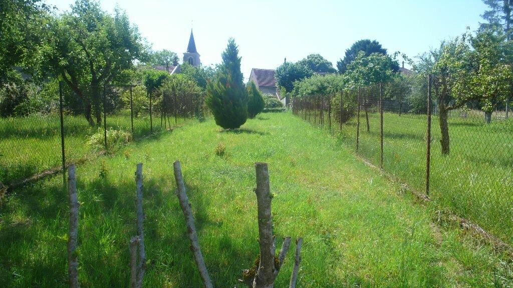 Maison à louer 2 51m2 à Tracy-sur-Loire vignette-3