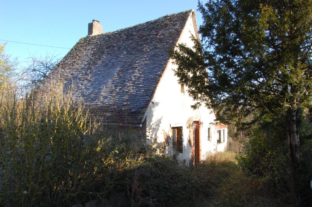 Maison à vendre 2 54m2 à Le Noyer vignette-1