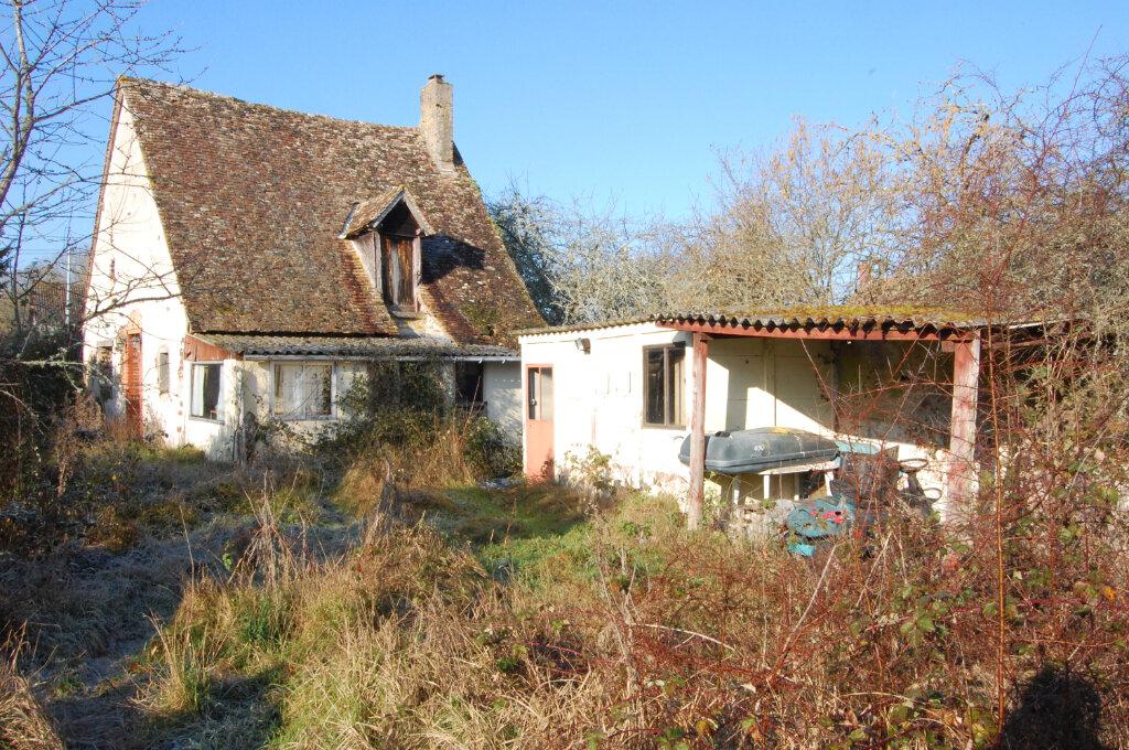 Maison à vendre 2 54m2 à Le Noyer vignette-8