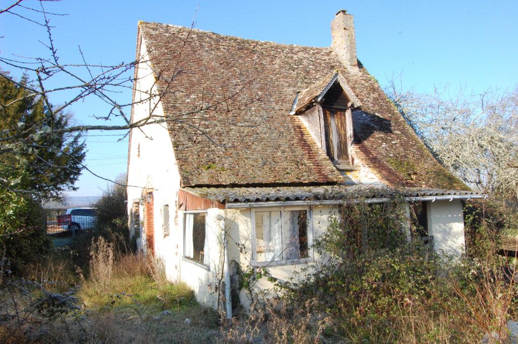 Maison à vendre 2 54m2 à Le Noyer vignette-9