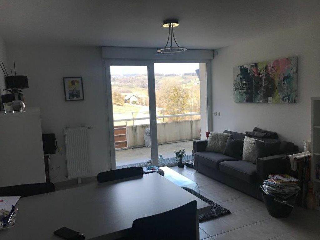 Appartement à louer 2 42.75m2 à Allonzier-la-Caille vignette-5