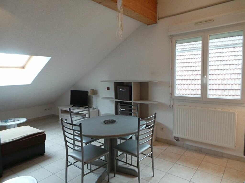 Appartement à louer 1 32.29m2 à Allonzier-la-Caille vignette-2
