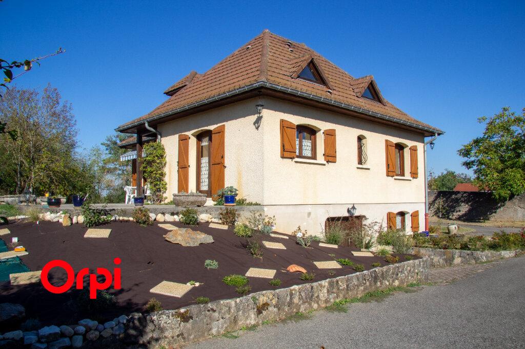 Maison à vendre 8 126m2 à Morestel vignette-4