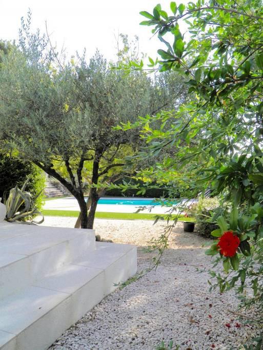 Maison à vendre 7 167m2 à La Cadière-d'Azur vignette-17