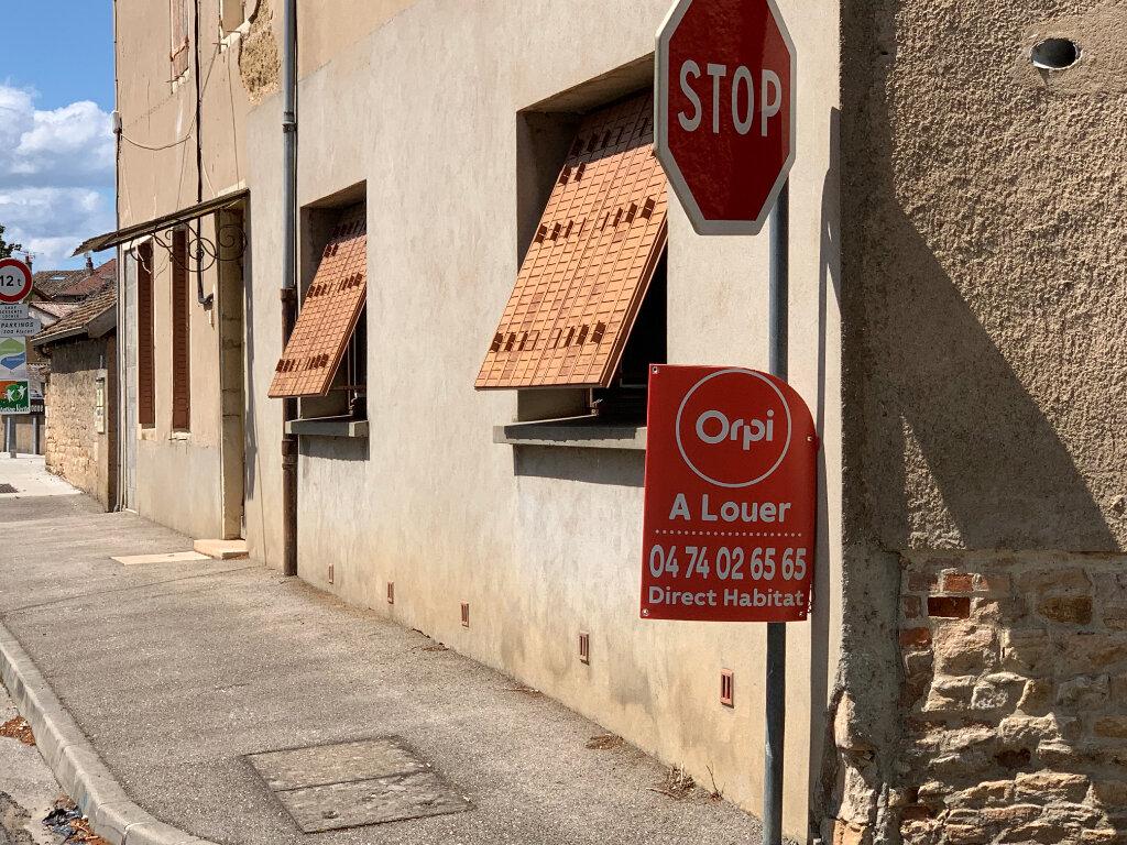 Appartement à louer 2 52.53m2 à Saint-Didier-sur-Chalaronne vignette-7