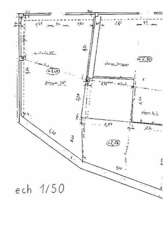 Maison à vendre 3 66m2 à Hagetmau vignette-4