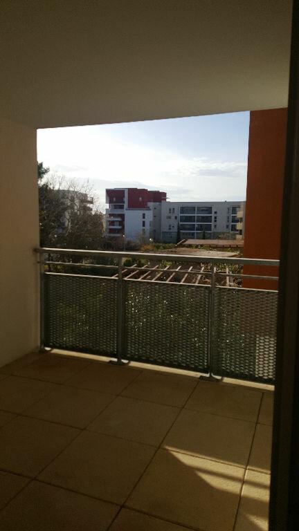 Appartement à louer 1 34m2 à Montpellier vignette-2