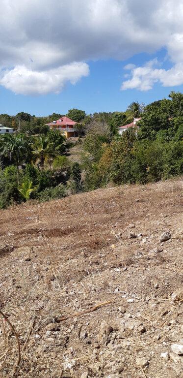 Terrain à vendre 0 1381m2 à Sainte-Anne vignette-2