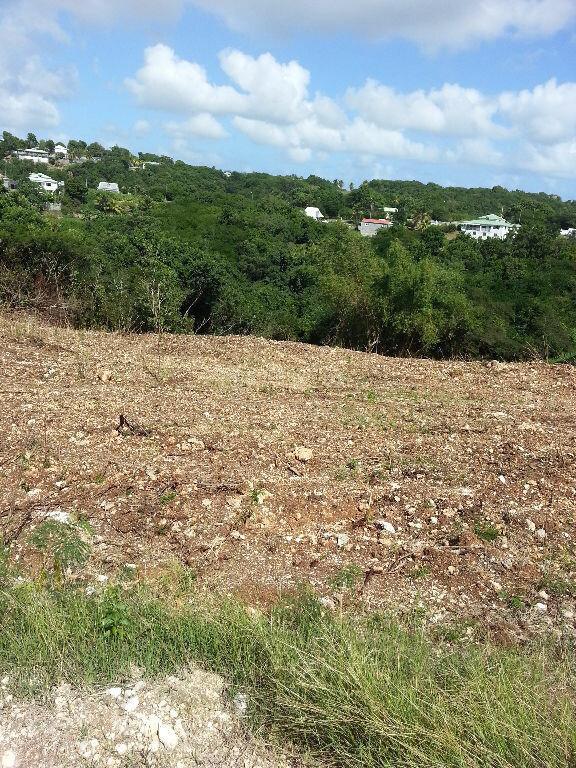 Terrain à vendre 0 1381m2 à Sainte-Anne vignette-3