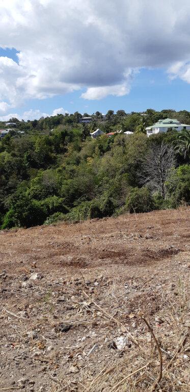 Terrain à vendre 0 1381m2 à Sainte-Anne vignette-5