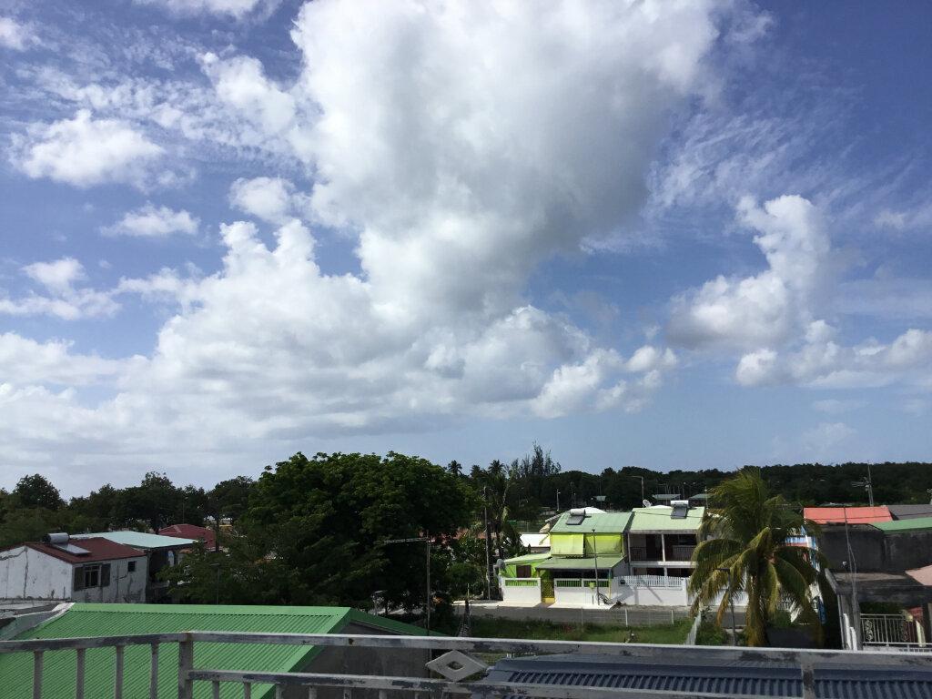 Maison à vendre 15 273m2 à Port-Louis vignette-7