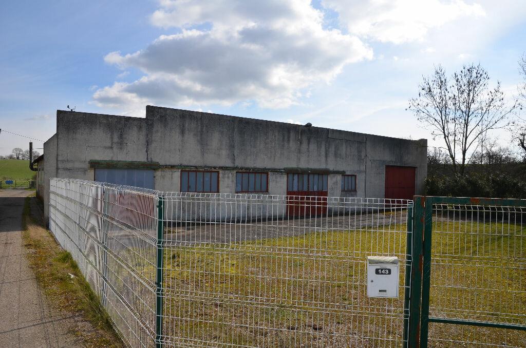 Maison à vendre 5 550m2 à Mauves-sur-Huisne vignette-1