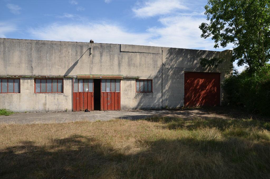 Maison à vendre 5 550m2 à Mauves-sur-Huisne vignette-10
